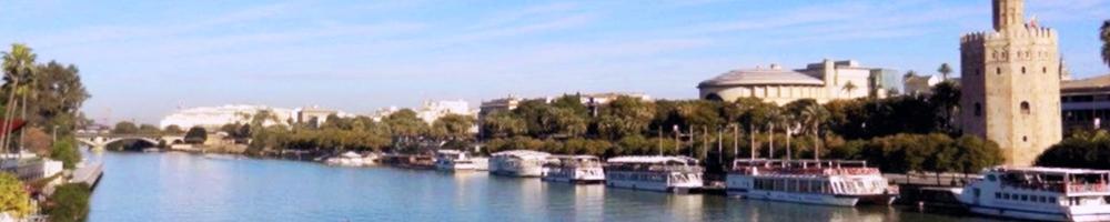 UPR – Seville Exchange Program
